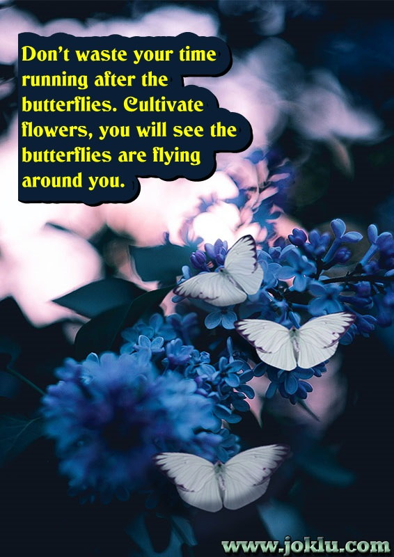 Butterflies inspirational message