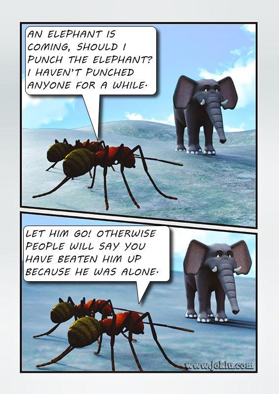 Elephant is coming joke in English
