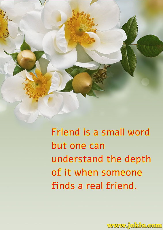 Friend is a small word friendship message