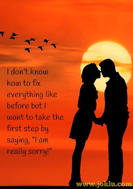 I am sorry message