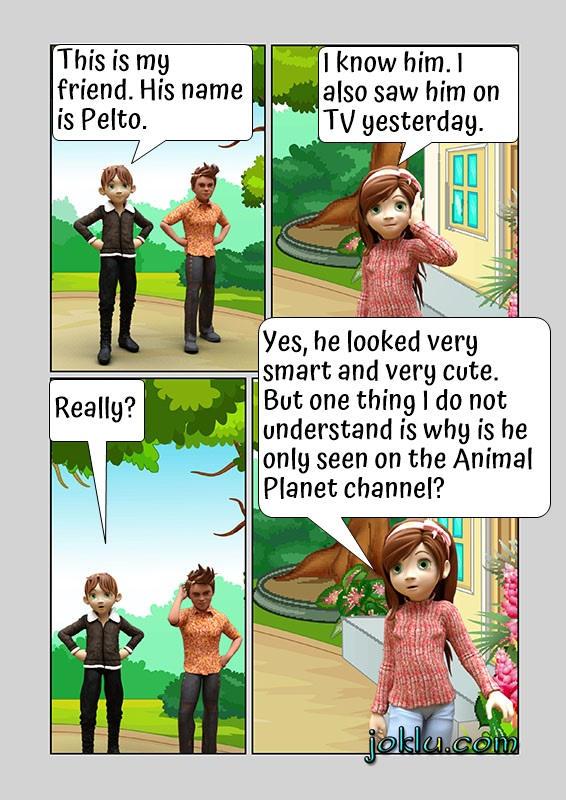 Introduction insult joke