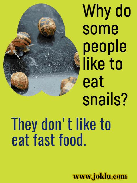 Snail joke