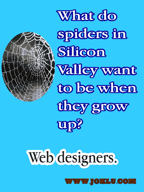 Spiders-in-Silicon-Valley-joke