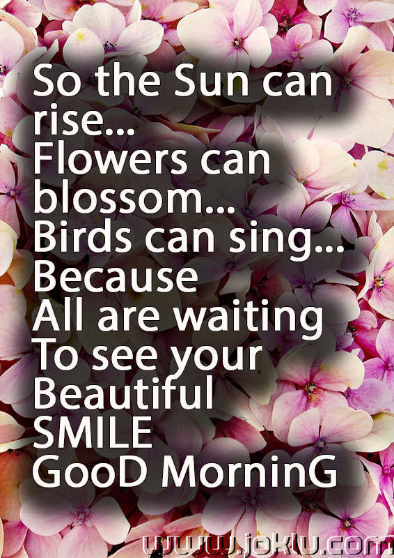 Sun can rise good morning message in English