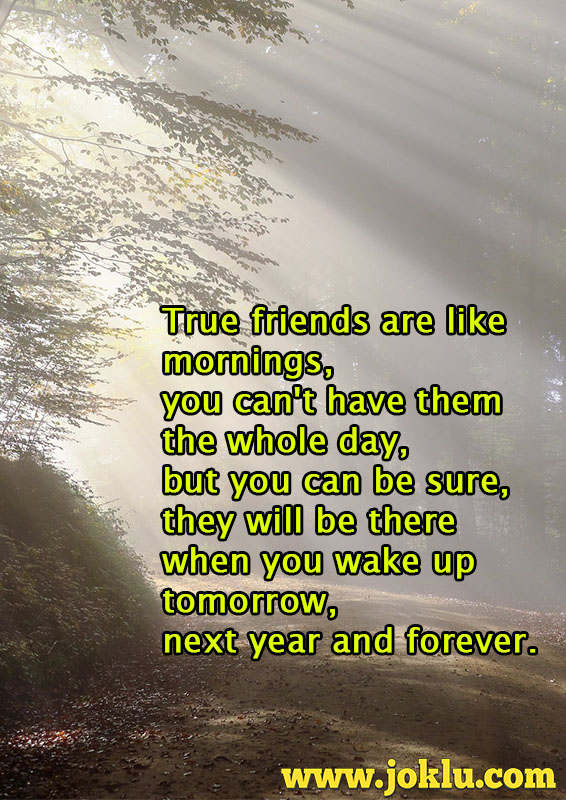 True friends are like mornings friendship message in English